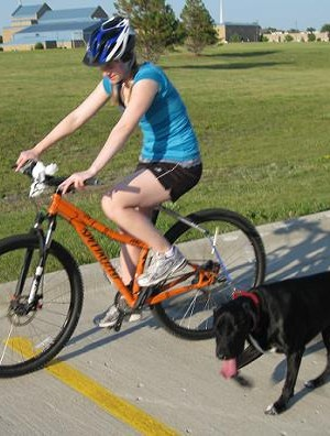 bike-leash-for-dogs