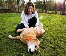 gi-petting-dog-reiki